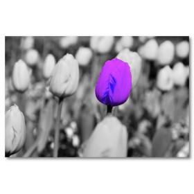 Αφίσα (μωβ, φύση, λουλούδια, τοπίο)